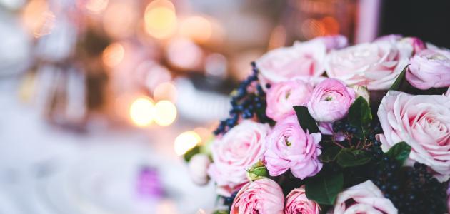 صور الورود الجميلة بالصور , لغة العشاق الورد