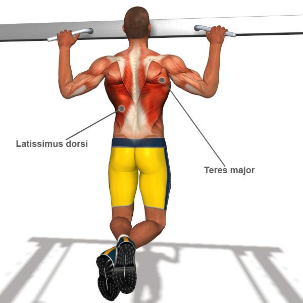 صور تمرين عضلة الظهر , مظهر جميل لعضلة الظهر
