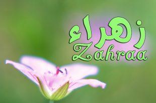 صور صور اسم زهراء , اروع صور لاسم زهراء