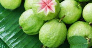 صور فوائد الجوافة للحامل , الجوافة لصحة الحامل والطفل