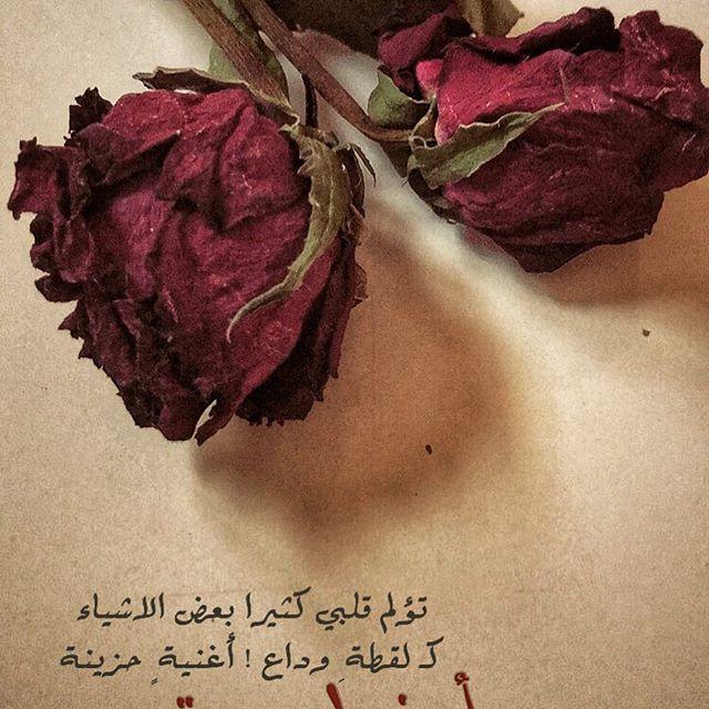 خواطر عن ذبول الورد ذبول الورد حزن وغياب احاسيس بريئة