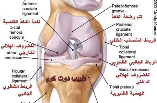 صور علاج الام الركبة , الام الركبة وكيفية علاجه