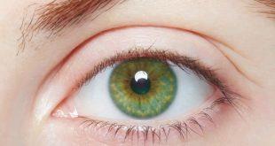 صور صور عيون خضراء , عيون خضراء تسحر القلوب العاشقة واو