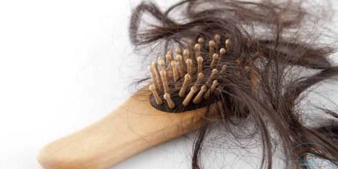 صورة معدل تساقط الشعر الطبيعي , ماهوا معدل تساقط الشعر الطبيعى