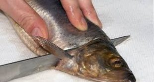 صور طريقة تنظيف السمك وتتبيله بالصور , طريقة تتبيل السمك