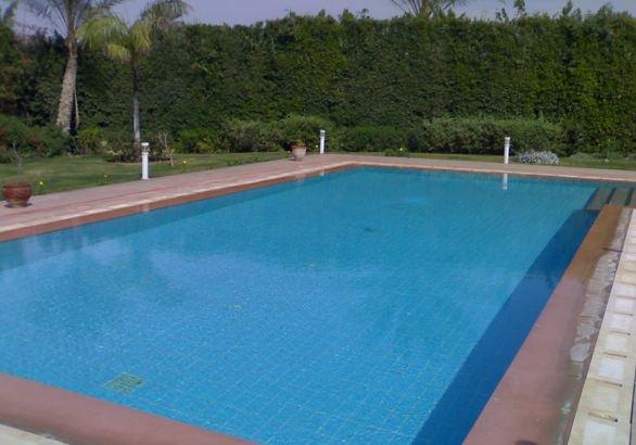 صورة حمامات سباحة في مصر , احسن وارقى حمامات سباحة فى مصر