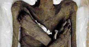 صورة صور جثة فرعون , جثة فرعون