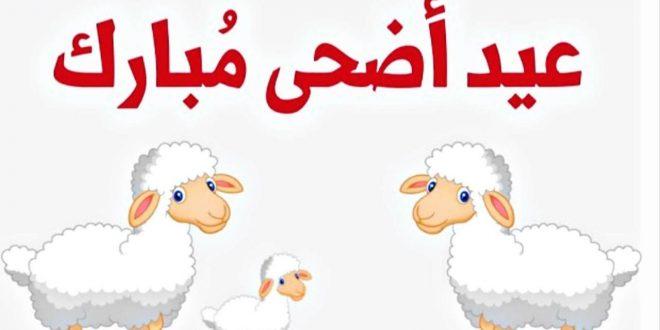 صورة رسائل عن عيد الاضحى , مسجات للعيد الكبير