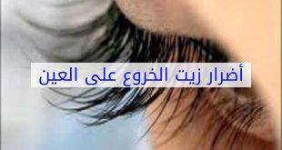 صورة اضرار زيت الخروع على العين , زيت الخروع و تطويل الرموش و مدي تاثيره علي صحه العين