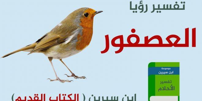 صورة تفسير حلم عصافير , معني هروب العصافير من صاحبها