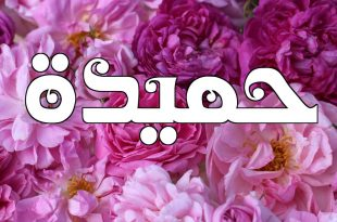 صورة معنى اسم حميدة , الصفات التي تحملها اسم حميده