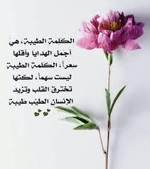 صورة مقولات عن التسامح , المسامح كريم خليك حليم