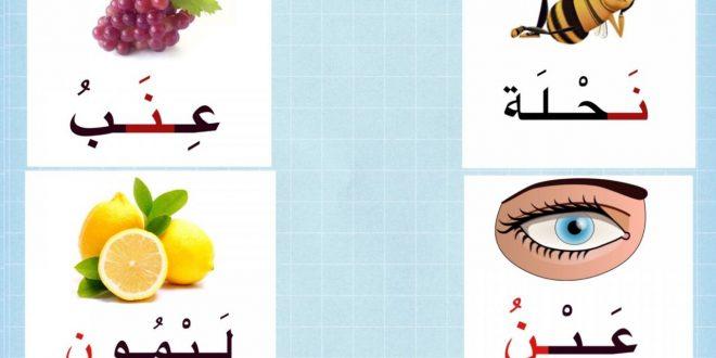 صورة كلمات بحرف النون , حل لغزك ومتشغلش بالك