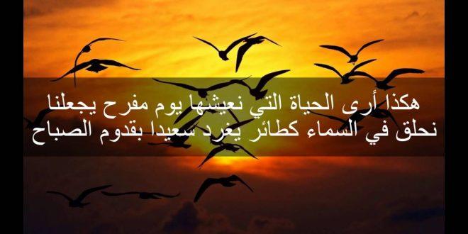 صورة اجمل ما قيل عن السلام , عبارات وحكم عن السلام