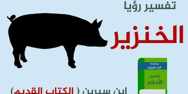 صورة خنزير في المنام , تفسير رؤيه الخنزير في المنام