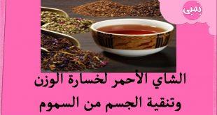 صورة يساعد في تقليل الوزن,ما هي فوائد الشاي الاحمر